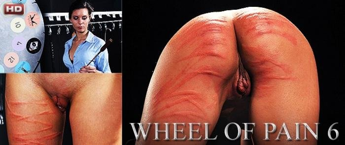 ElitePain: (Djess) - Wheel of Pain 6  [HD 720p / 1.24 GB] - Spanking