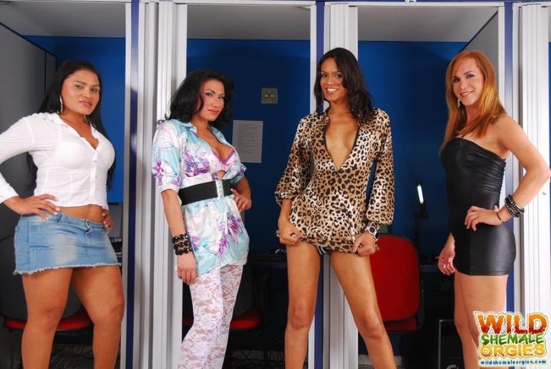 WildShemaleOrgies: (Alexia Firenzie, Duda Carvalho, Kawanna Di Prado, Lorena Smith) - Transsexual Orgy In The Internet Club [HD720p / 882 MB] - Transsexual / Anal / Group