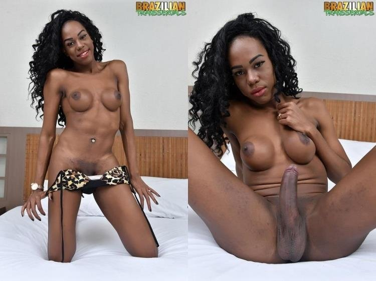 Brazilian-Transsexuals: (Patricia Campbell) - Patricia Campbell - Black TS Patricia Campbell [HD / 466 MB]