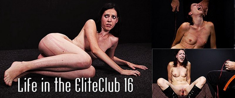 ElitePain: (Torture) - Life in the EliteClub 16 [SD / 416 MB]