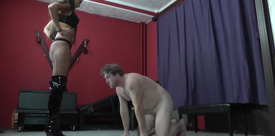 Cruel-Strapon.com: (Mistress Amanda) - THE PERFECT INTERROGATING METHOD [HD 720p / 361 MB] - Femdom, Humilation