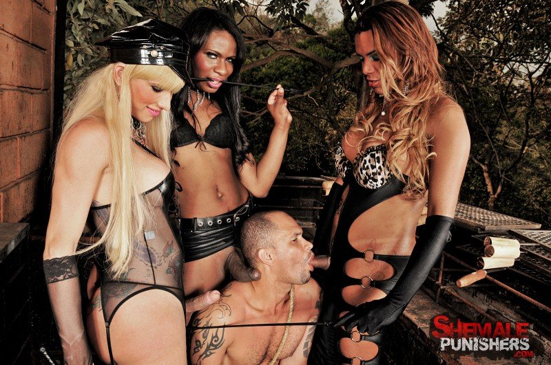 ShemalePunishers.com: (Kamilly Santos, Perla Lohan and Thayla Oliveira) - BDSM [HD / 480.94 Mb] -
