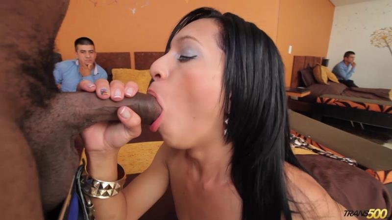 Trans500: (Natalia Rico) - Cuckold Cocking [HD / 834.42 Mb] -